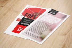 Flyer-Free-PSD-Mockup-4.jpg.pagespeed.ce.0I72kyuFSr